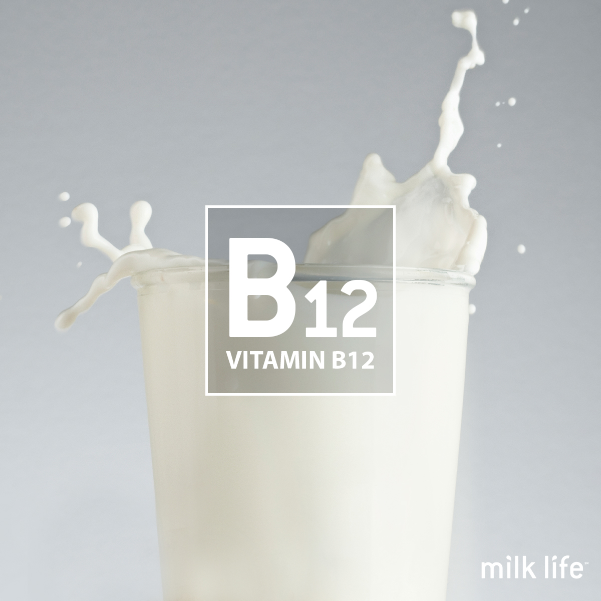 Vitamin B12 is a nutrient in milk