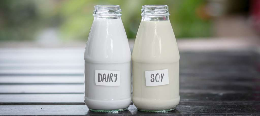 Image result for cow milk vs soy milk